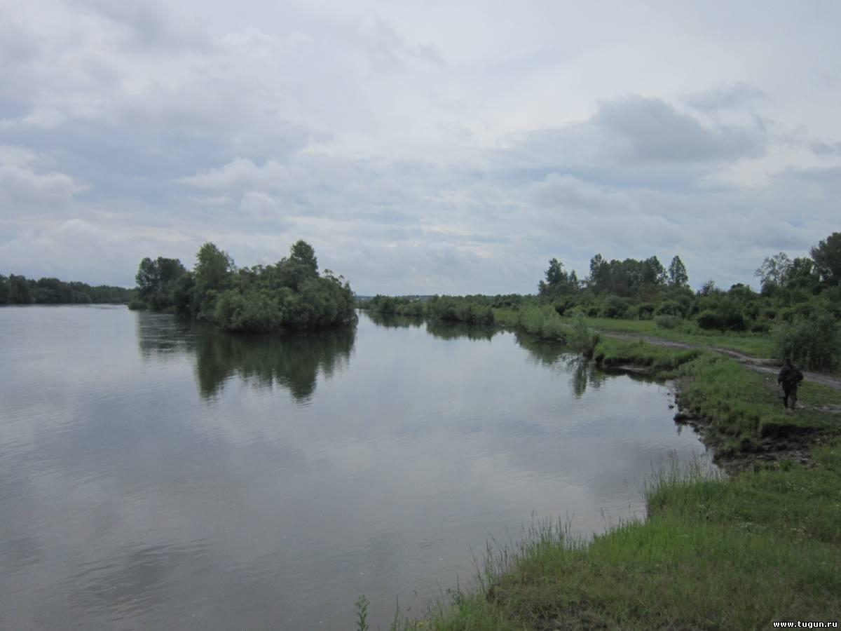 рыбалка сплавной сетью на реке