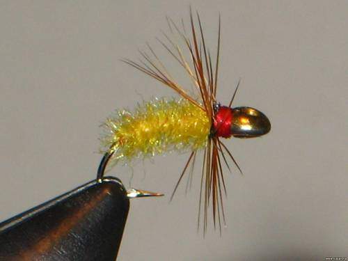 форум рыбаков 35