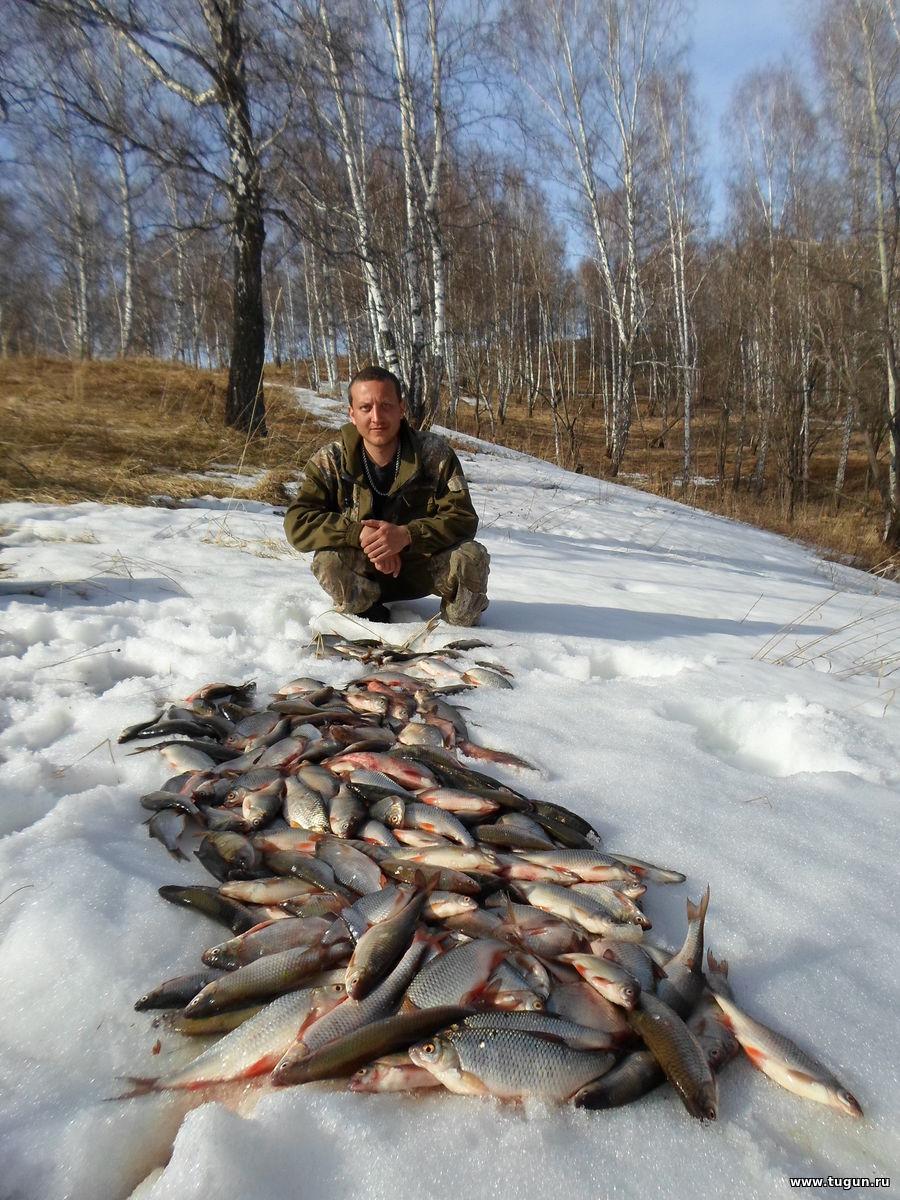 какая прикормка нужна для ловли сазана