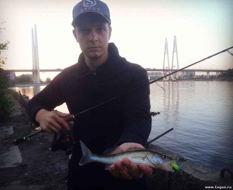 официальный сайт приманки fish hungry
