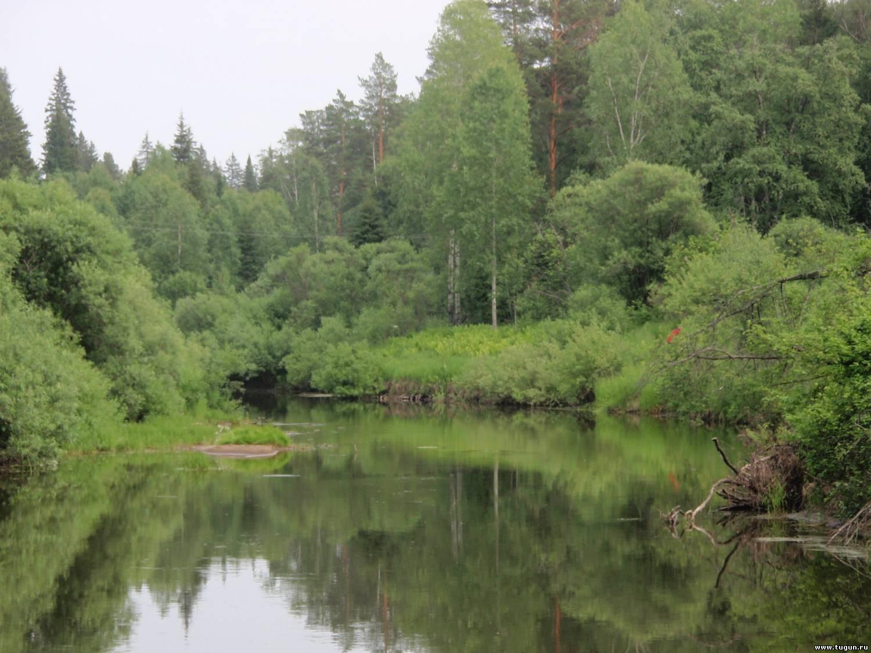 рыбалка сплав по рекам 2018