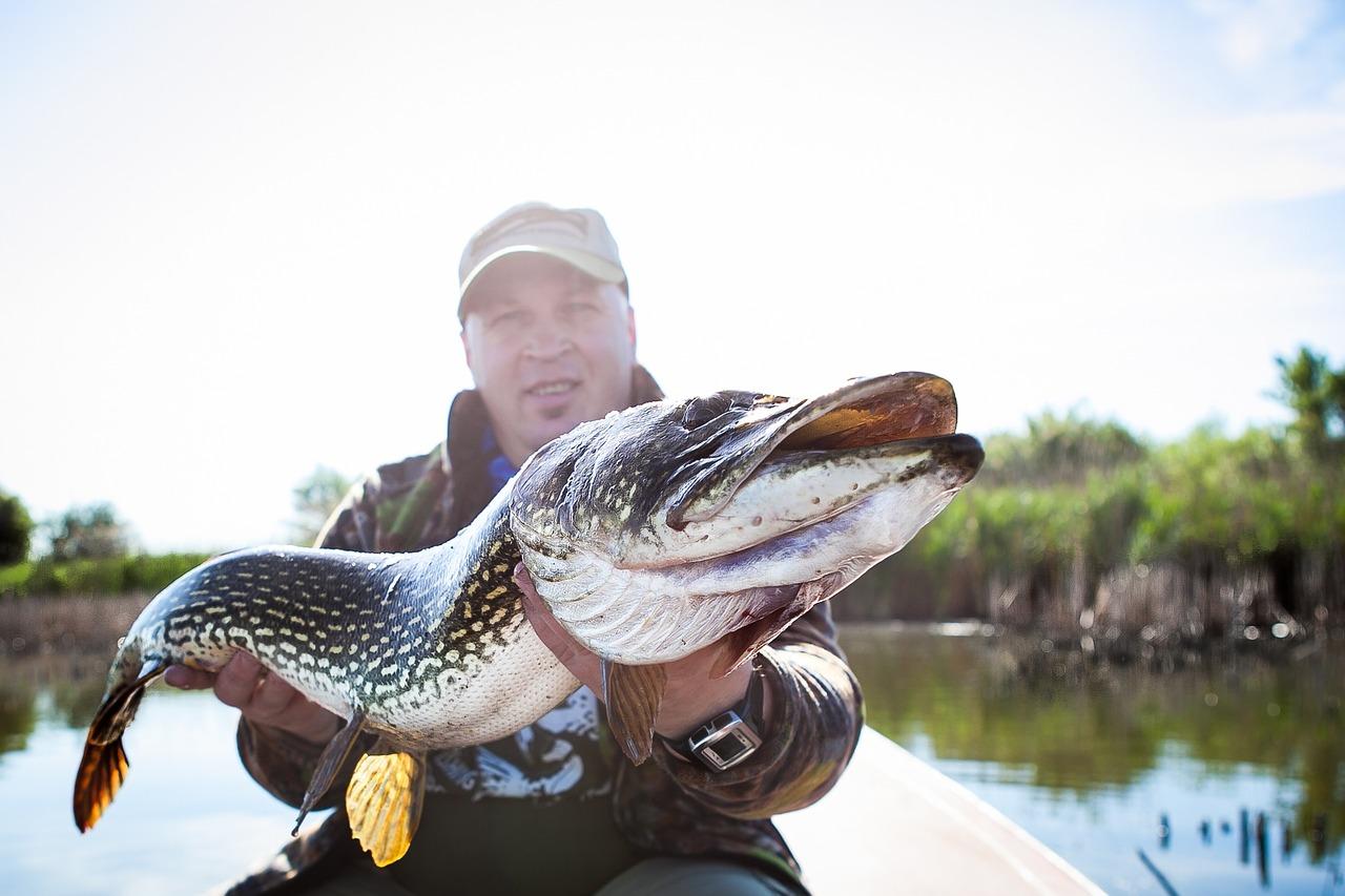 Рыбалка с крупной рыбой